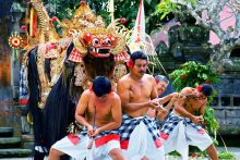 Kintamani + UBud + Water Fall + Kecak and Dinner Tour